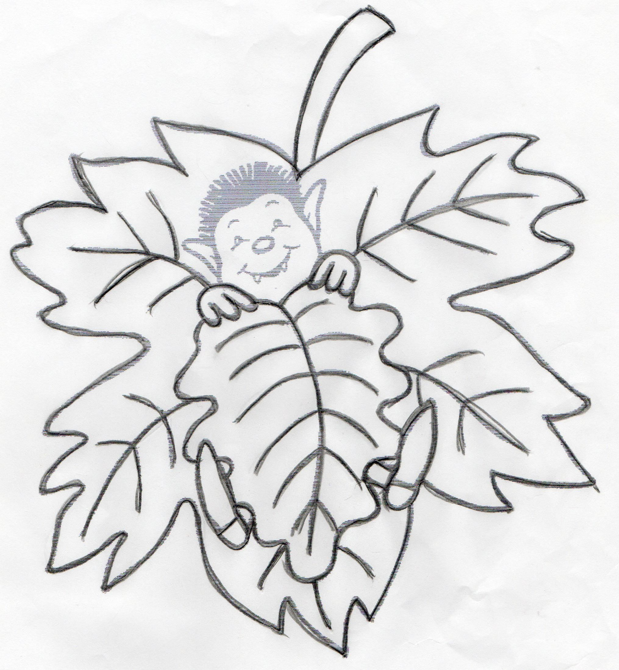 Gabarit des feuilles d'automne.